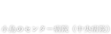 小鳥のセンター病院(中央病院)