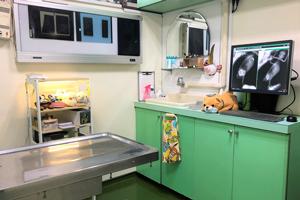 小鳥のセンター病院・診察室